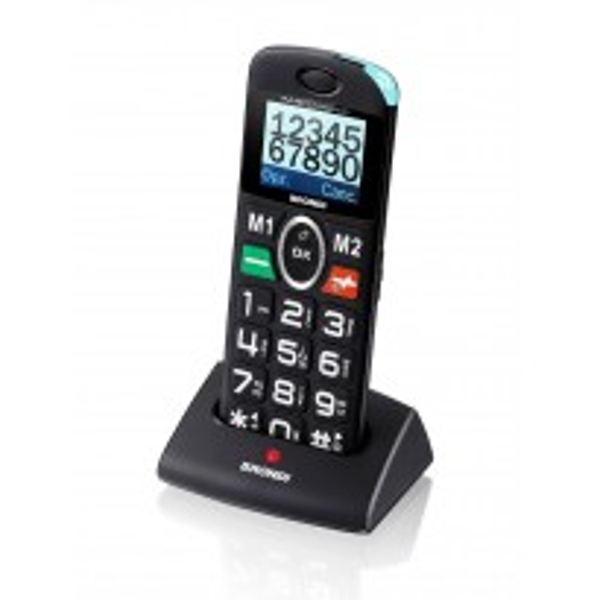 BRONDI AMICO PRATICO GSM
